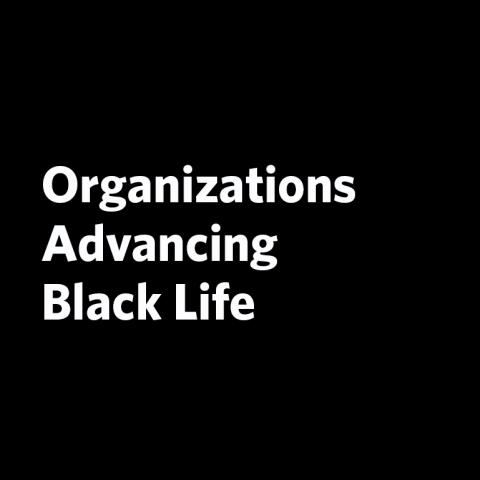 Organizations Advancing Black Life